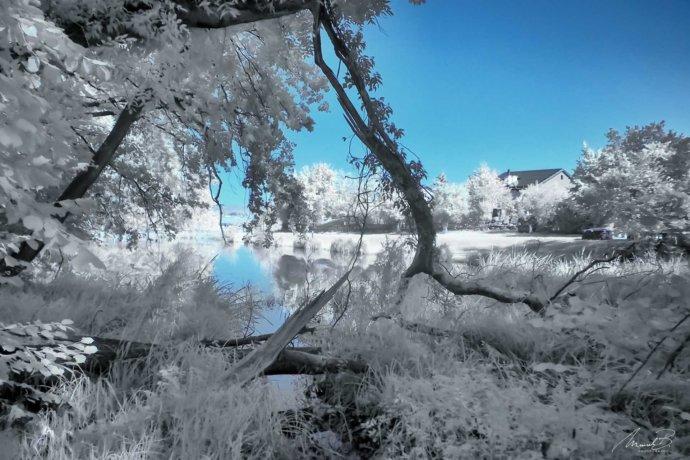 eaudesuisse infrarot storzenweiher